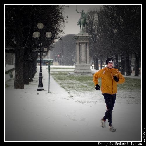 francois redon-raigneau 3 paris sous la neige bambi