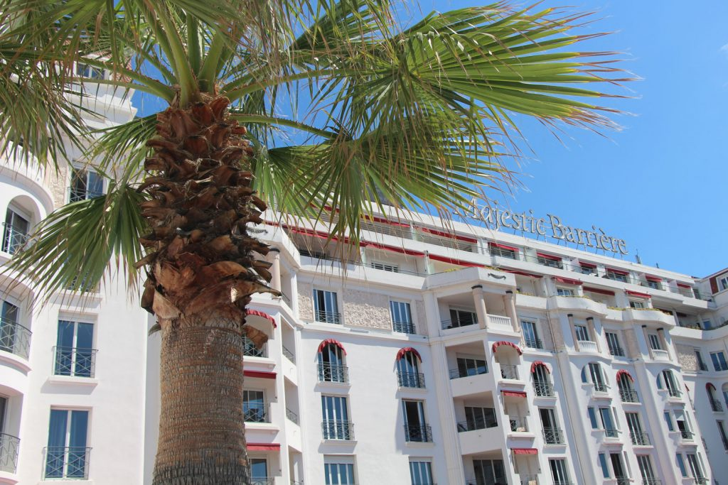 dormir-majestic-cannes-chien-pet-friendly-19