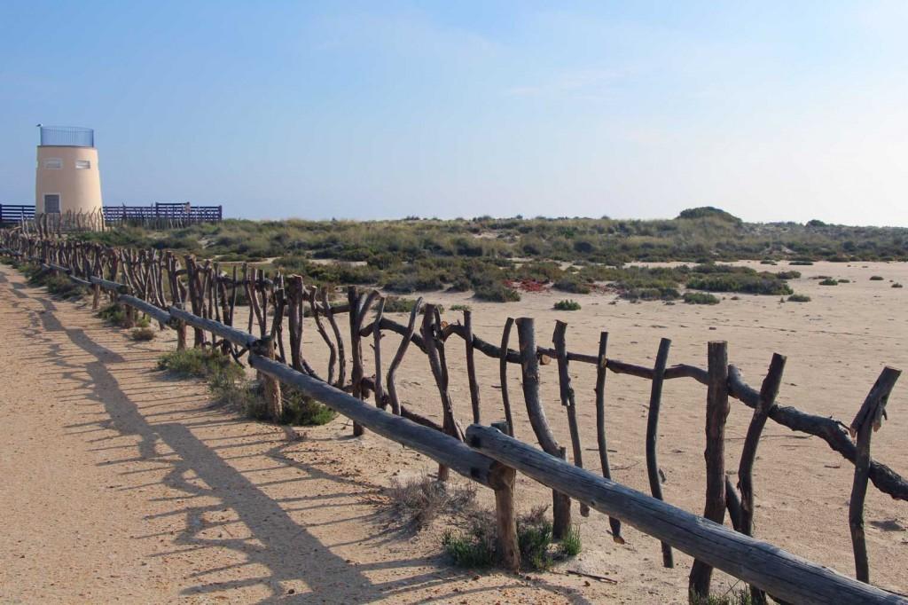 murcia-San-Pedro-del-Pinatar-2