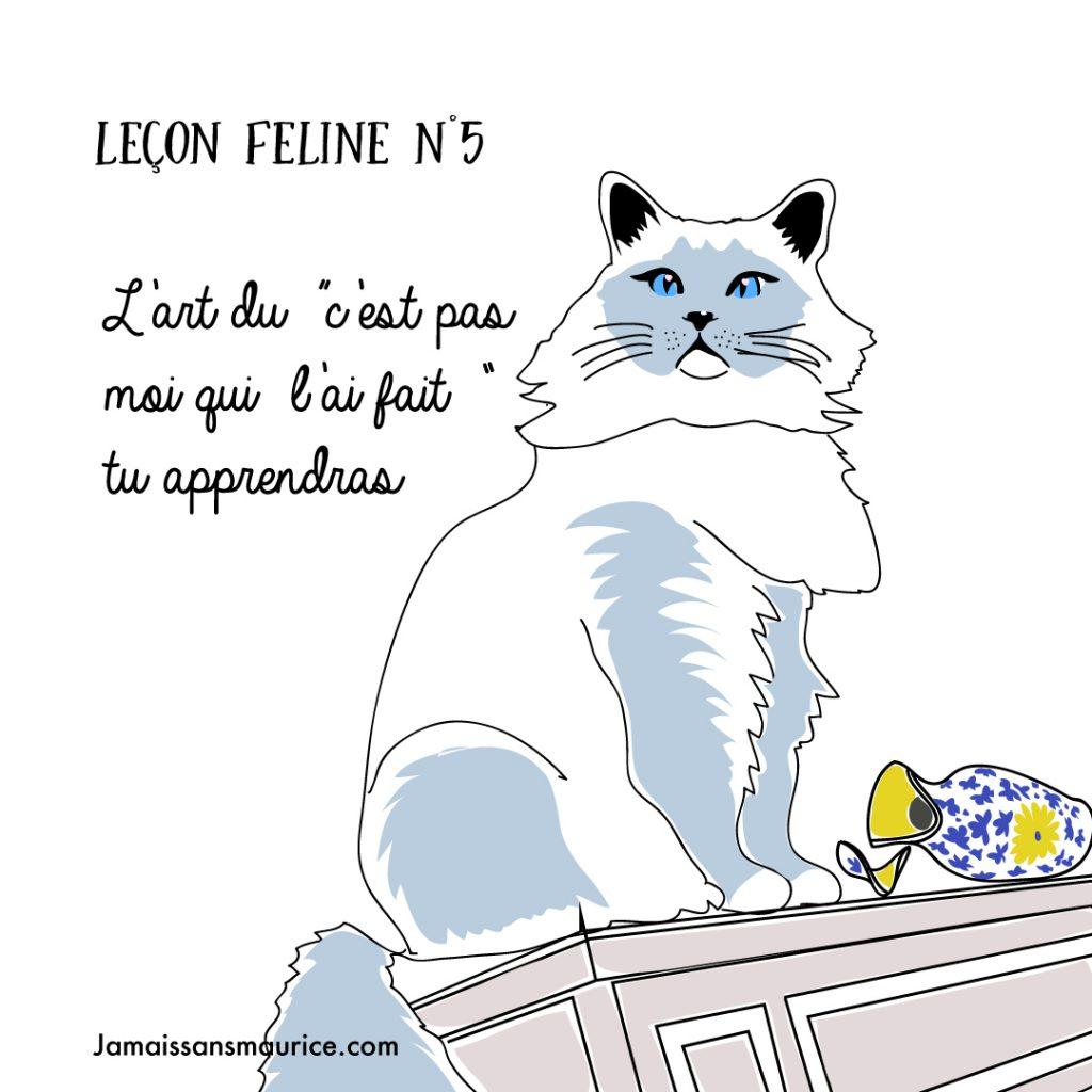 illustration chat leçons félines jamais sans maurice
