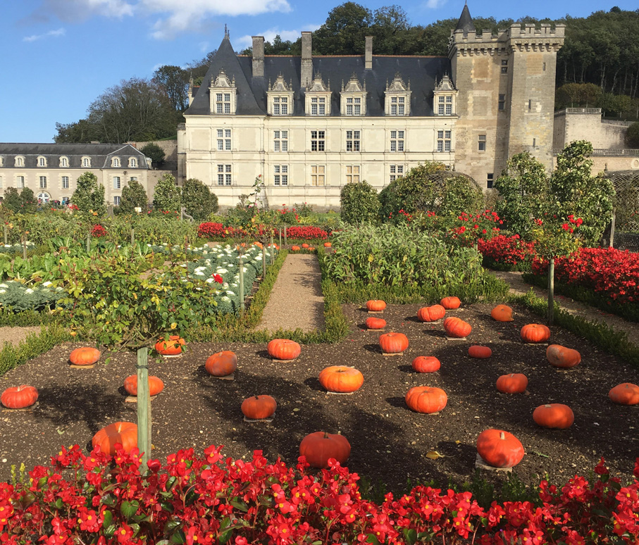 road trip en france chateau de la loire villandry jardin