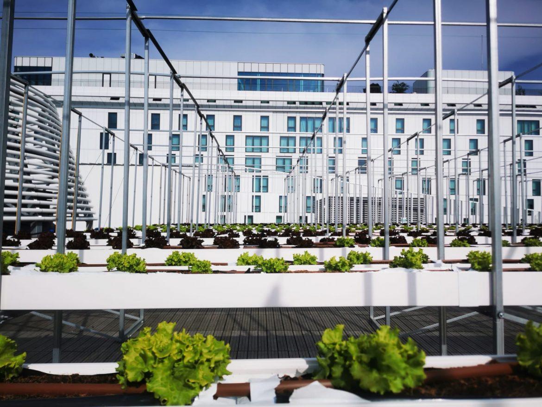ferme urbaine nature nu paris porte de versailles