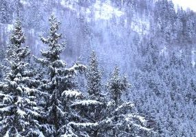 oz en oisans hotel moontain hostel station ski chalet Alpe d'huez